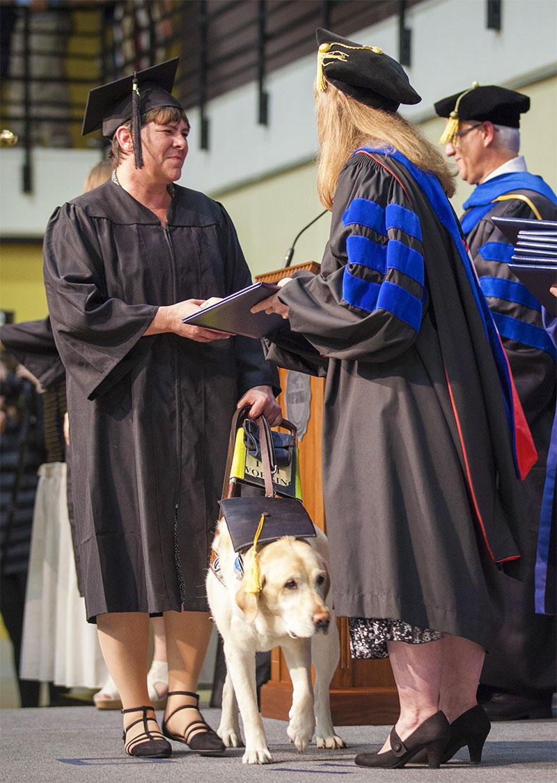 A student and her guide dog walk across a stage at commencment