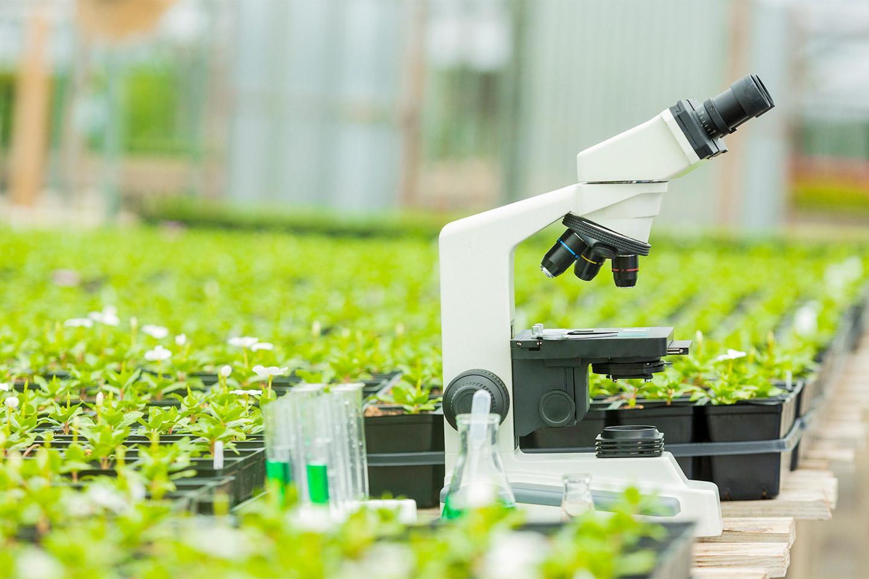 a microscope in a field of plants